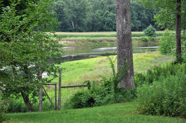 Pom's Cabin Farm2.jpg