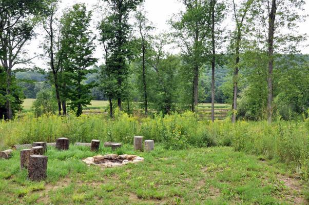 Pom's Cabin Farm3.jpg
