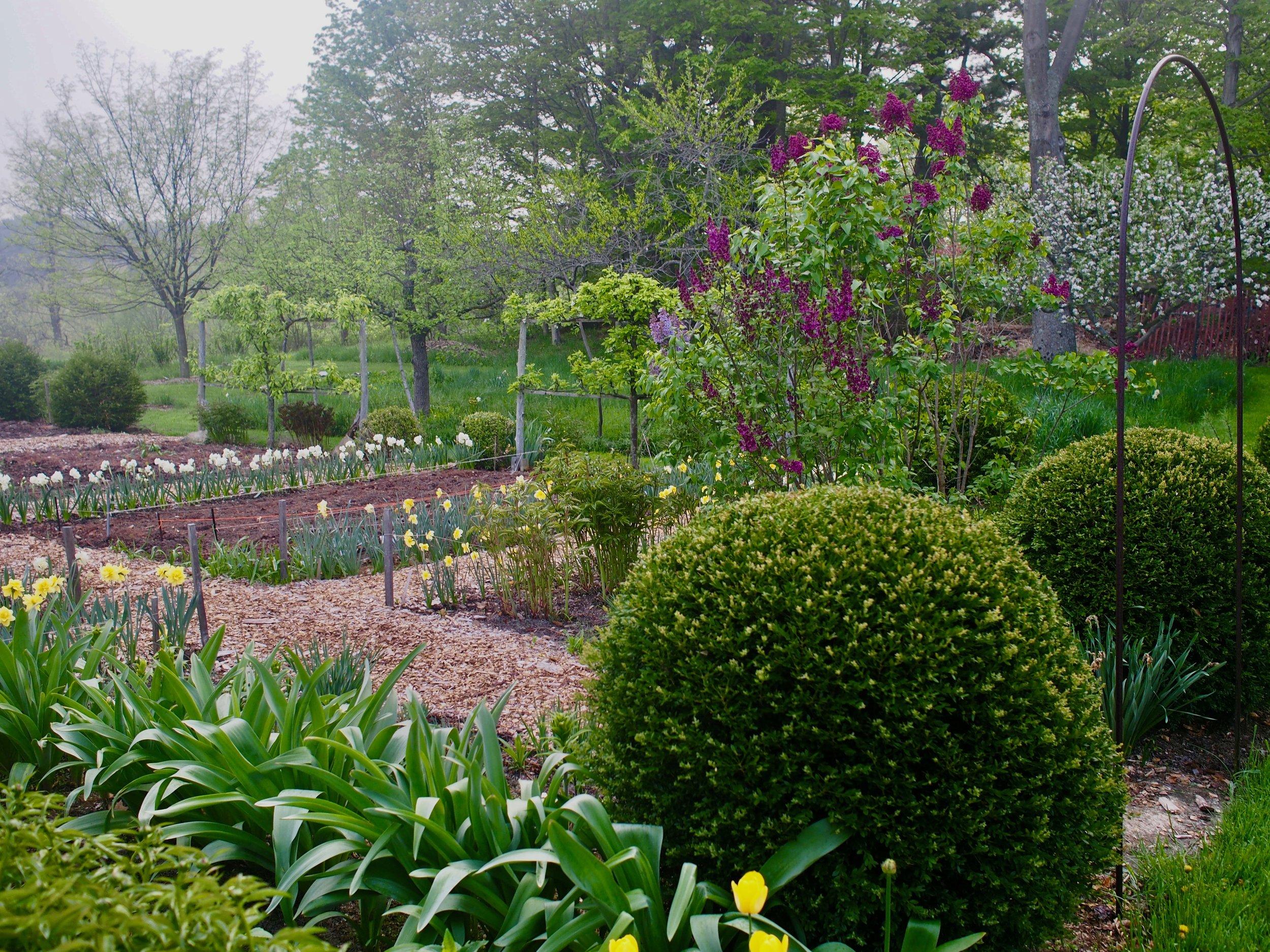 Spring Cutting Garden.jpg