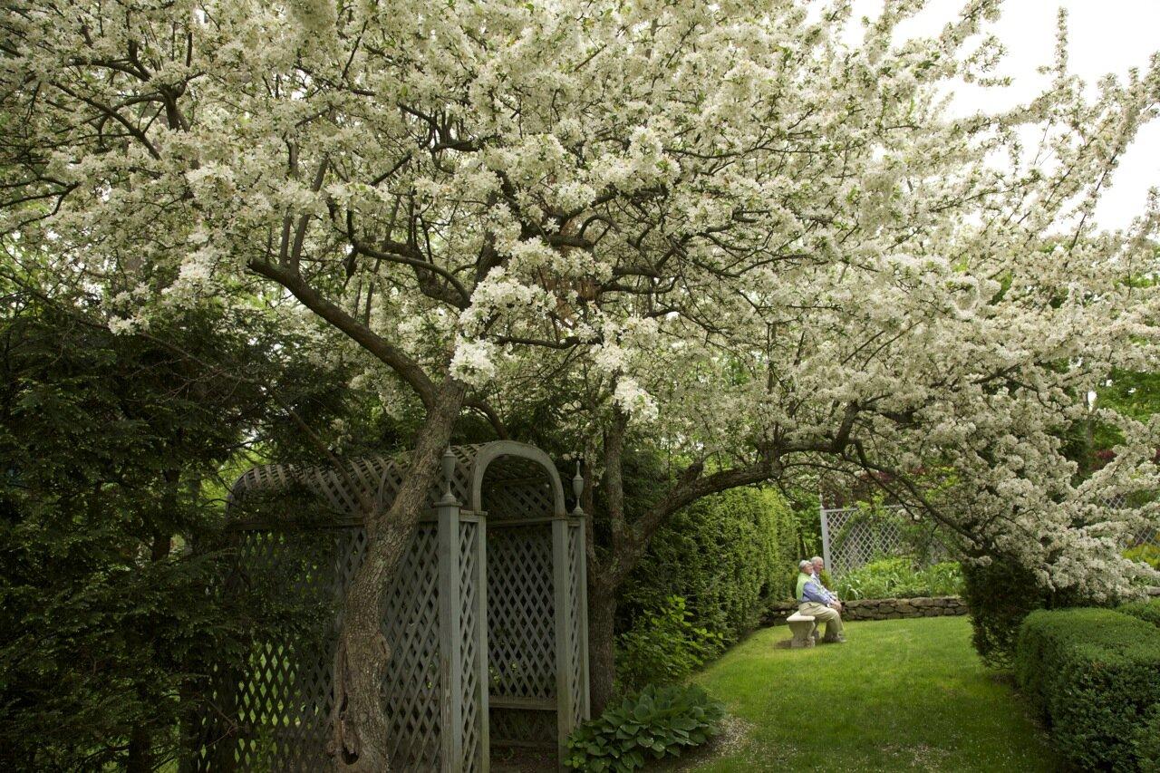 Garden Tours 2020 Trade Secrets