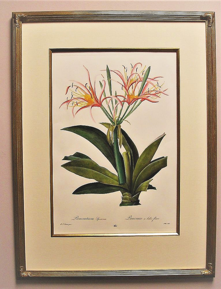 Original Kaye Hurtt Botanical Gilt with Whistler Frame, Silk Matt and Gilt Fillet