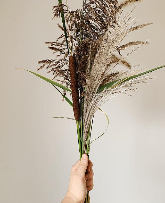 Bouquet d'automne. • Autumn bouquet. 🍂🌾