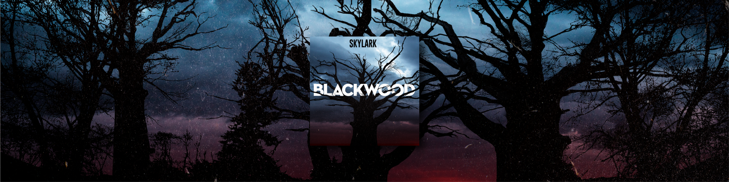 Blackwood Widescreen with Square Logo.png