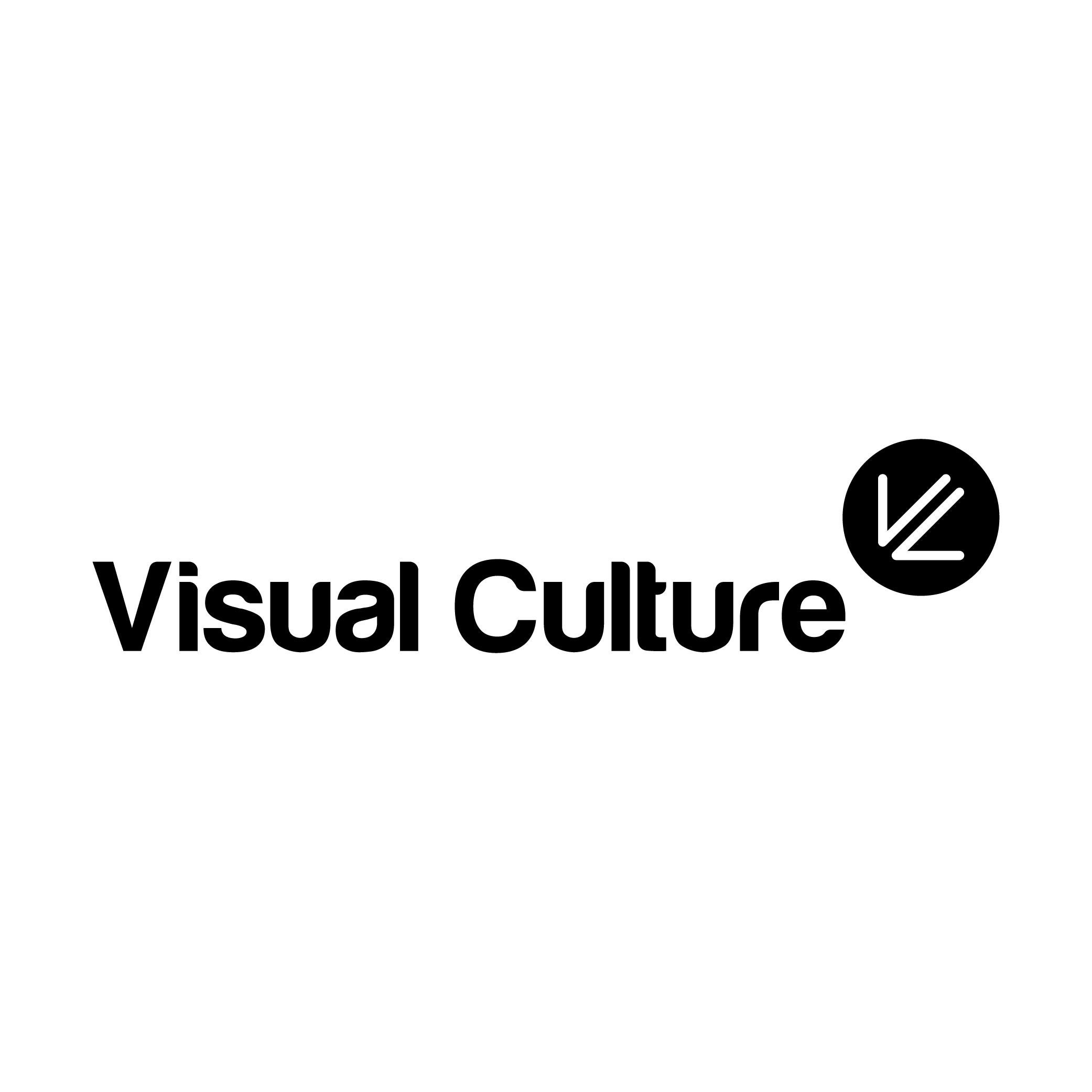 Visual Culture