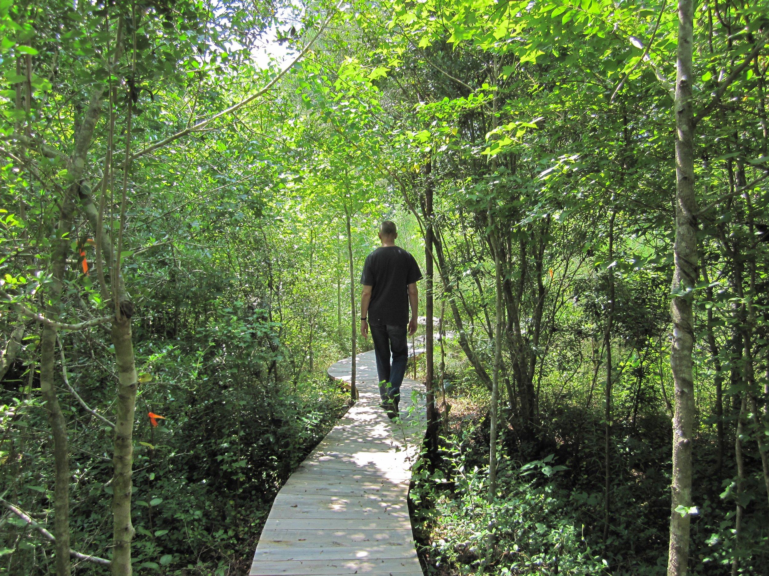 Lotus Lake path-Flint.jpg