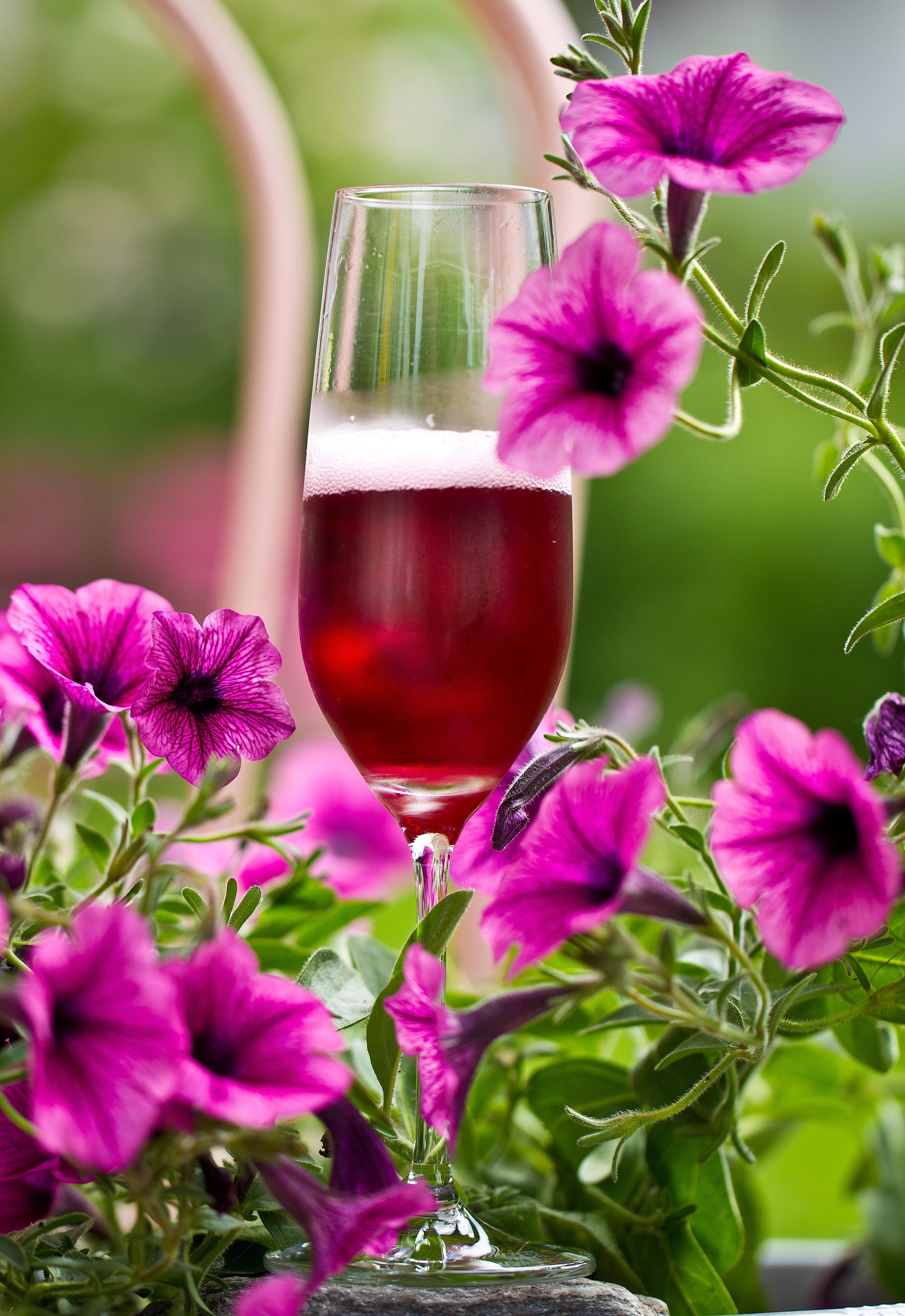Secco Frizzante rosé RABOROSA - Sinnlicher Genuss! Das Geheimnis dieses romantisch-fruchtigen Rosé ist die sehr rustikale und ursprüngliche Rebsorte Raboso, typisch für die Region Venetiens. Die Raboso-Traube stammt aus Venetien und gedeiht dort auch am besten bis zur optimalen Reife.Die WeinherstellungGeerntet werden die Raboso-Trauben gegen Ende September. Die Schale bleibt mit dem Traubenmost im Kontakt. Dadurch entsteht die intensive faszinierende Farbe.Der WeinDiese mitreißende Farbe kündigt die fruchtige Duftnote des Weines an. Die gute Säurestruktur gewährleistet eine prickelnde Lebhaftigkeit im Gaumen und bewahrt den Nachgeschmack von frischem und reifem Frühlingsobst. Optimaler Secco für die ganze Mahlzeit, aber auch für sich alleine genossen.Empfohlene Trinktemperatur: 8-10° C.Alkohol Vol.: 11,0 %