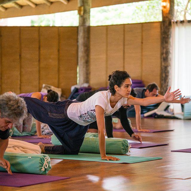 Conheça os Labs de nossa pós-graduação!  Atualmente há diversas evidências científicas sobre a efetividade da prática de yoga em trazer calma e clareza mental. A prática apoia no restabelecimento homeostático, ou seja, nos ajuda a voltar ao nosso estado natural. Os movimentos e a respiração podem ajudar a aliviar a pressão de emoções que ficam presas em nosso sistema. Esta prática milenar é uma poderosa ferramenta para todos aqueles que desejam lidar com conflitos de forma-não violenta.  Pensando nisso, integrado ao conteúdo acadêmico em Estudos de Paz e Conflito e Equilíbrio Emocional, nosso programa de pós-graduação oferece aos agentes de paz em processo transformação-aprendizagem três tipos de Labs de investigação e um deles é de Yoga.  Para saber mais, visite o nosso site. Nossa pós-graduação está com inscrições abertas para início em outubro de 2019. Link na bio!