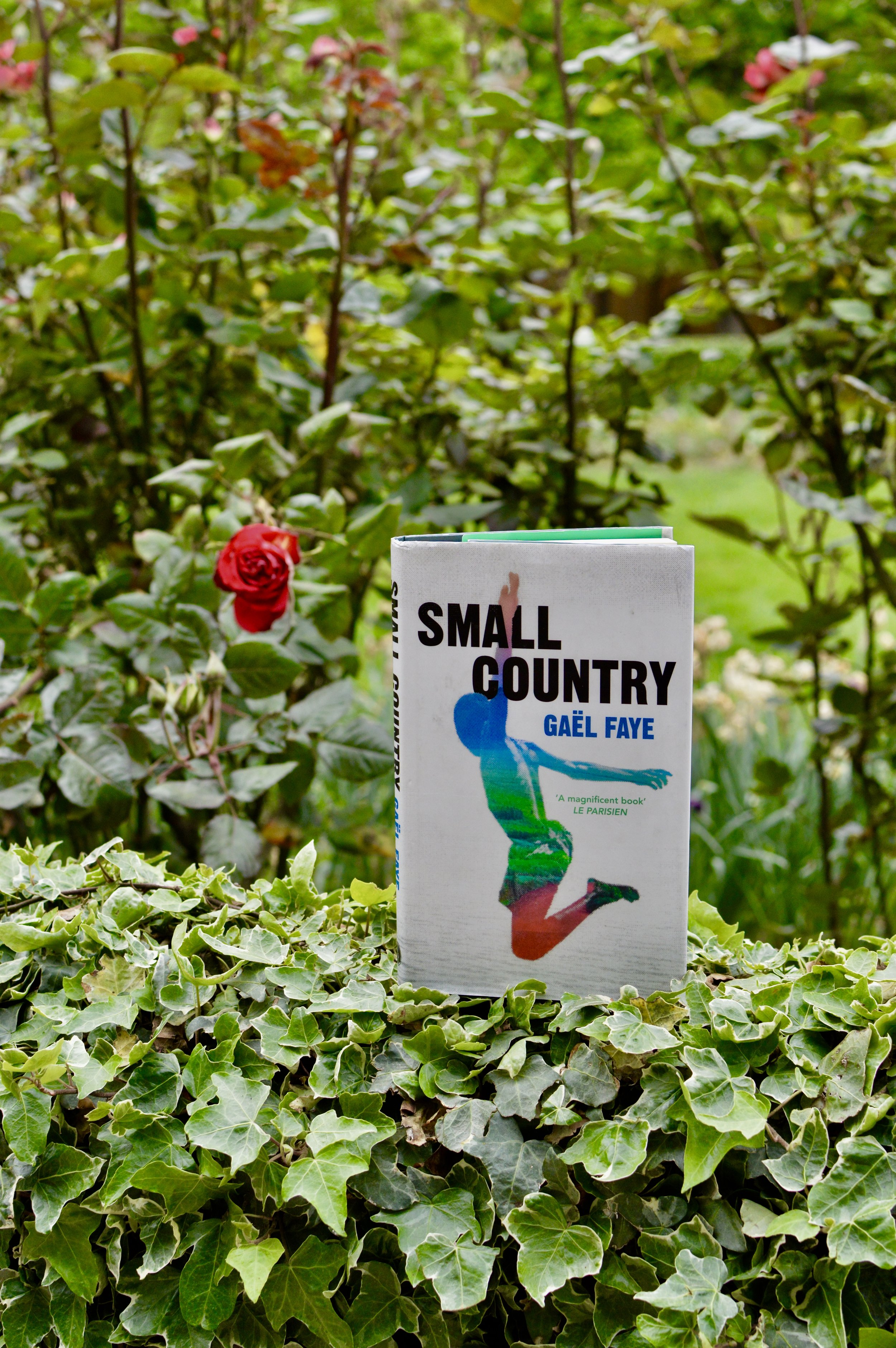 Reflections on Small Country by Gaël Faye - Blog Post Written by Jacqueline Ménoret