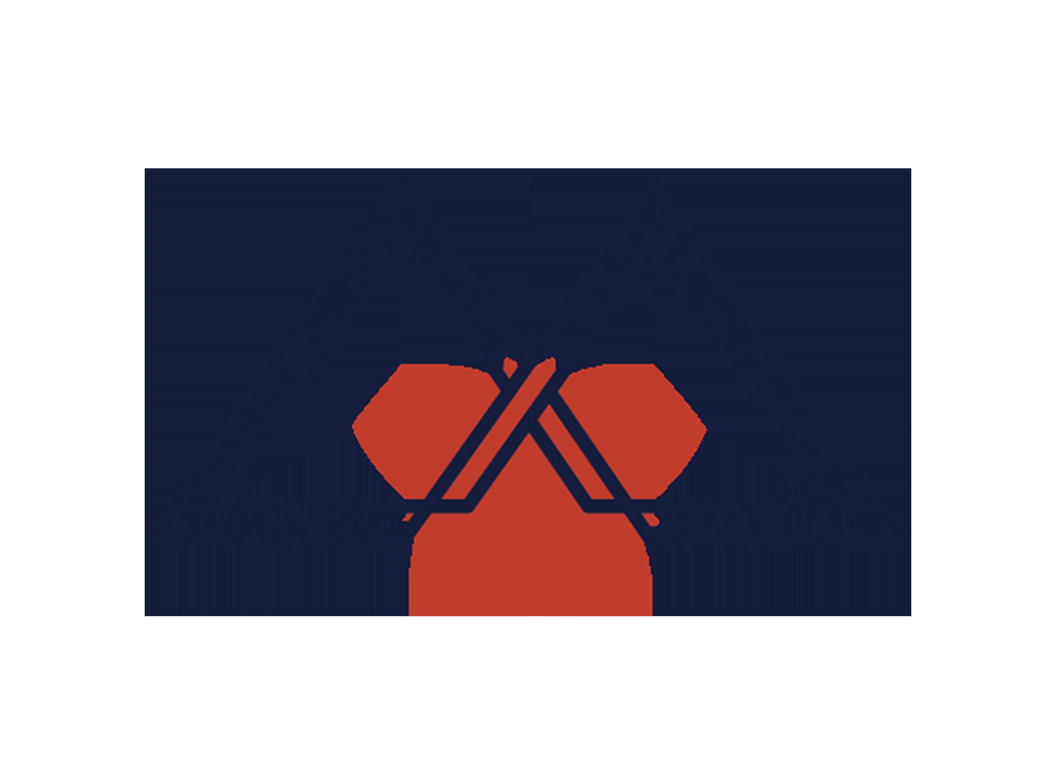 ziggyshoots_logo.png