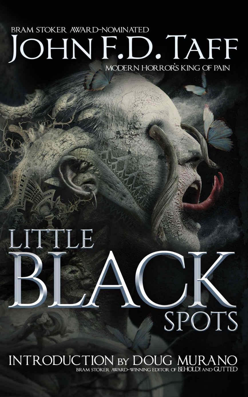 Little Black Spots_John FD Taff.jpg