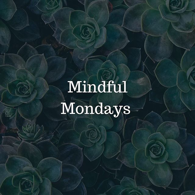 Happy Monday people!! This is what you can look forward to every Monday with @perrinwellnessandperformance. Mindful Monday's.. tips, tools, quotes all geared towards helping you to understand what it means and why it's so important! ~~~~~~~~~~~~~~~~~~~~~~~~~~~~~~~~~~~~~~~~~~~Mindfulness: the act of paying attention in a particular way ... on purpose ... in the present moment.. without judgement. ~Jon Kabat-Zinn ~~~~~~~~~~~~~~~~~~~~~~~~~~~~~~~~~~ #mindfulness #mindfulawareness #mindfulmondays #perrinwellnessperformance #integrativehealth #integrativewellness #dukeintegrativehealth #bethehealthiestyou #tunein #healthiestyou #succesfulyou #performbetter #bemindful