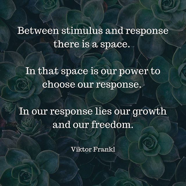 MINDFUL MONDAY!!! ~~~~~~~~~~~~~~~~~~~~~~~~~~~~~~~~~~~~~~~~~~~~ Practicing mindfulness and meditation give us this space. The space between stimulus and response. The ability to push pause. When we have this.. when we train our brains to do this... we can respond accordingly ... instead of react 🙌🧘🏼‍♀️
