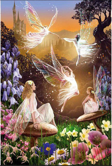- There really is a world where real fairies live….