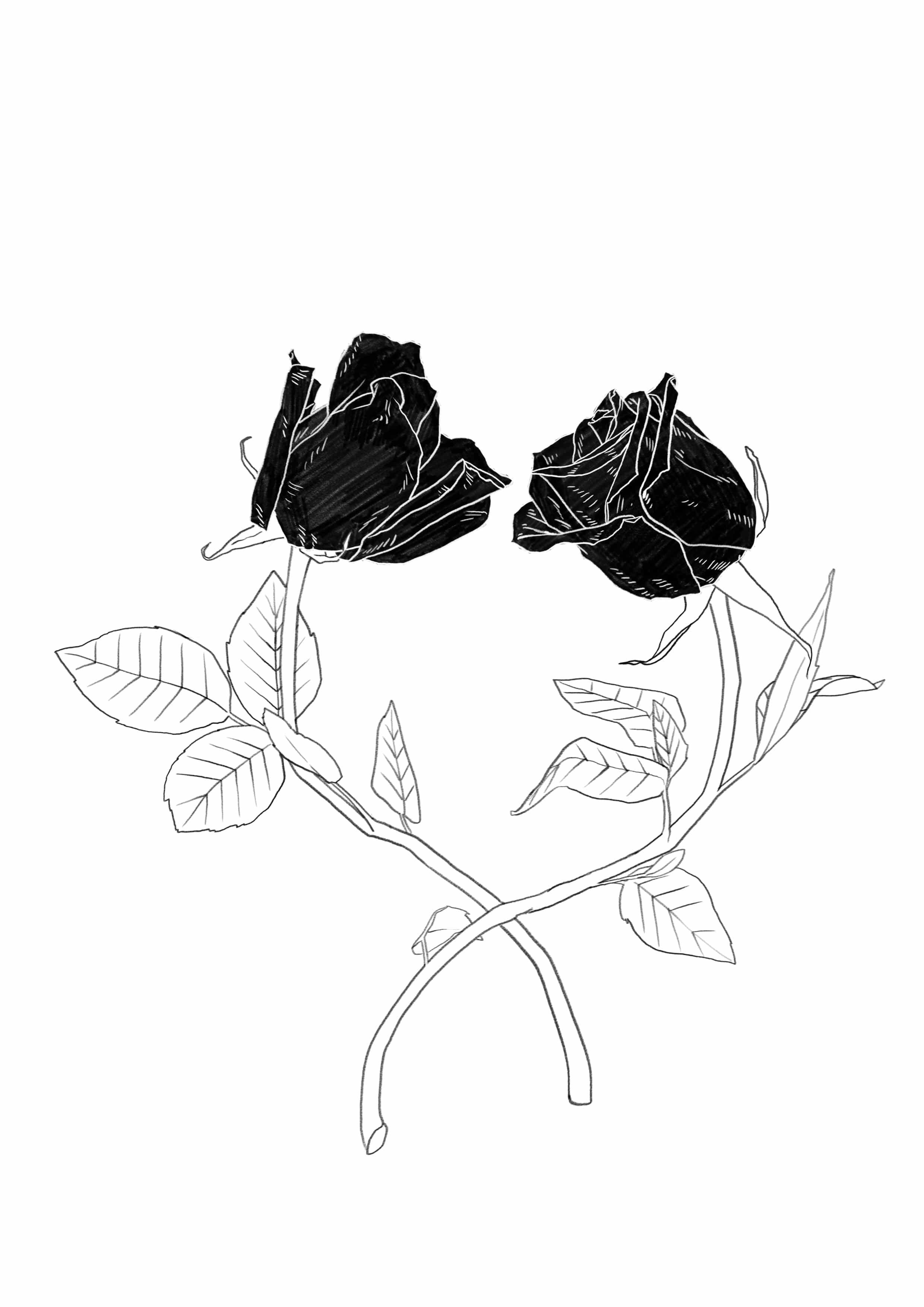 talking roses bw.jpg