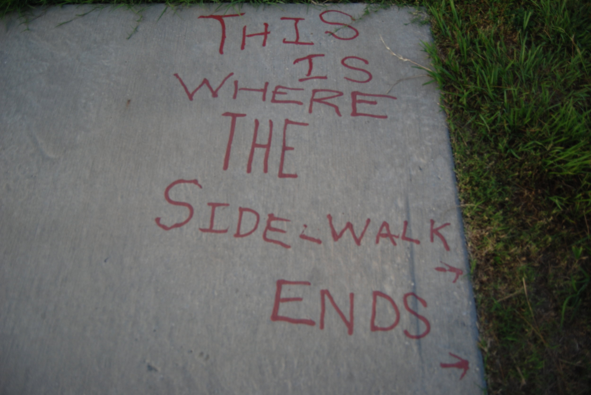 This is Where theSidewalk Ends, Lower Ninth Ward, New Orleans  Image: Liam Grealy