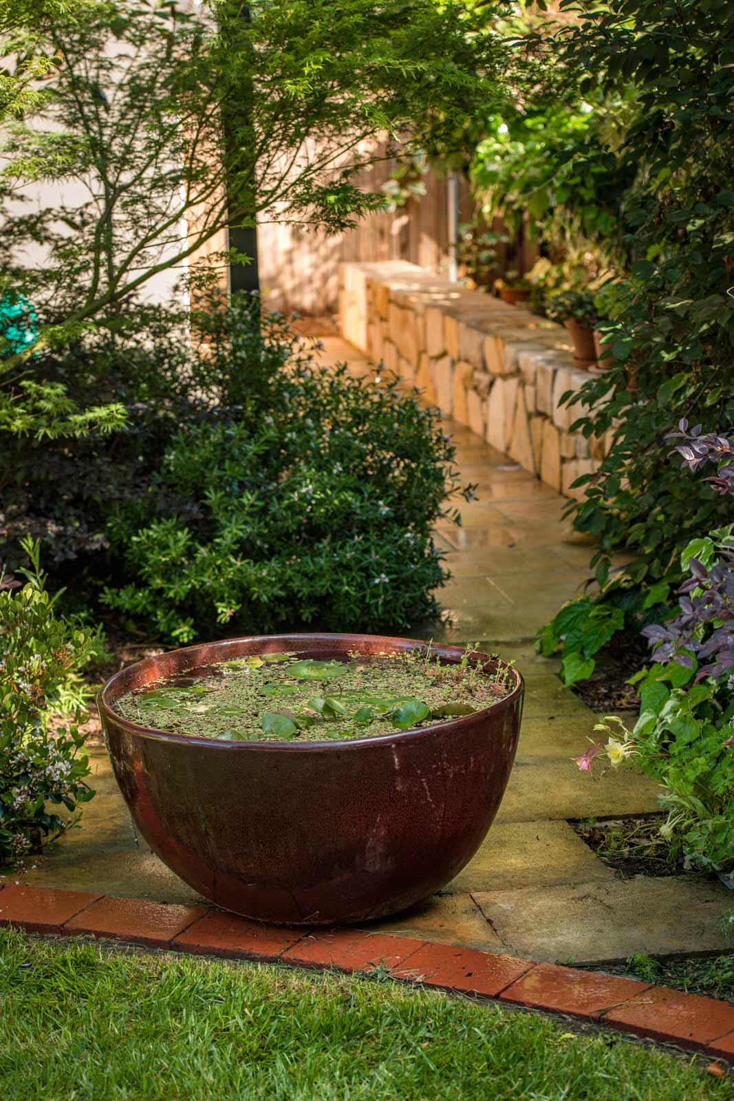 Shade garden sandstone wall, feature wall as seat, large water bowl with aquatics, natural materials, brick edging | Canberra Gardens