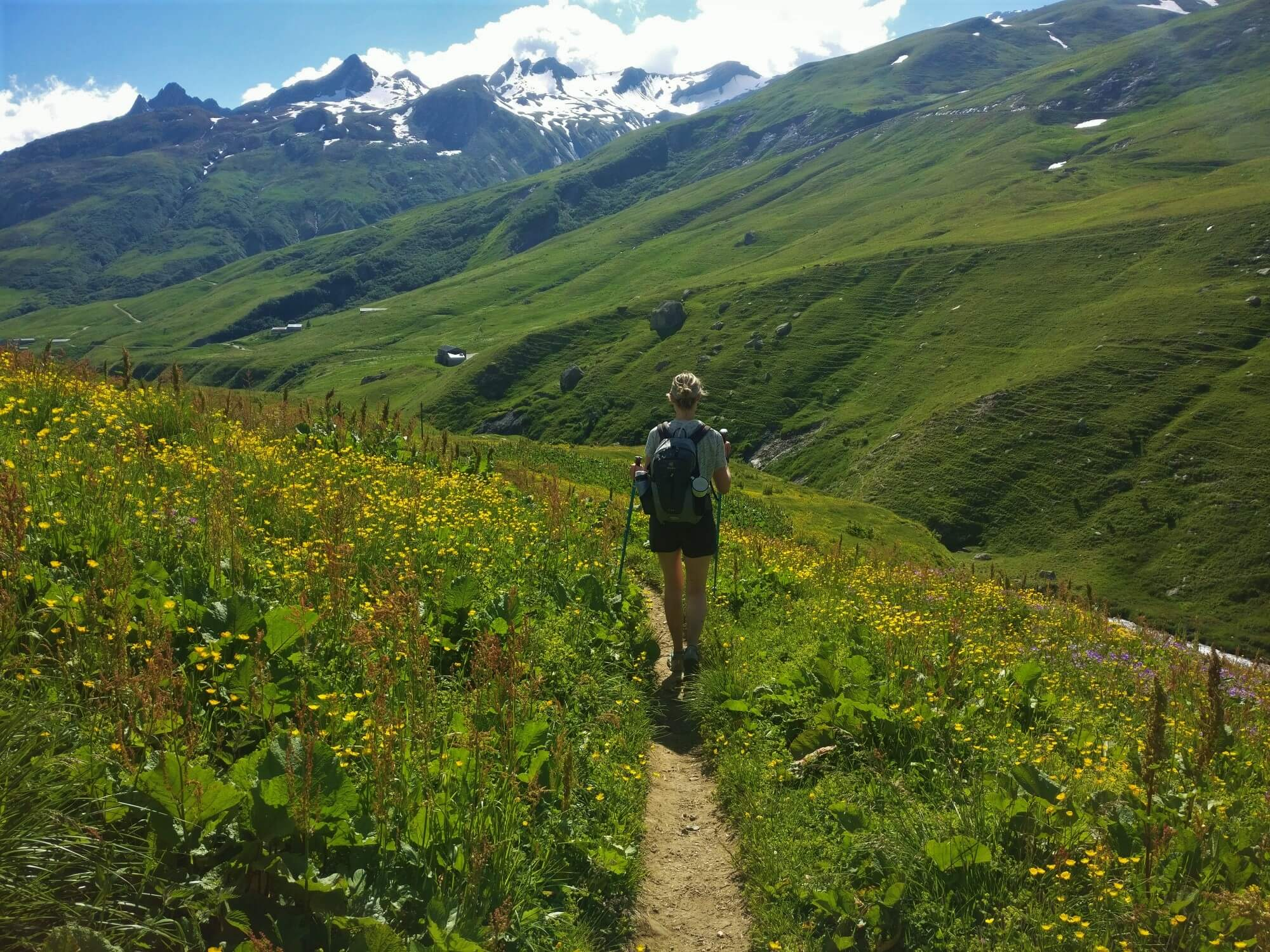 Vallée des Glacier:  Wildflowers lining the trail in June/July
