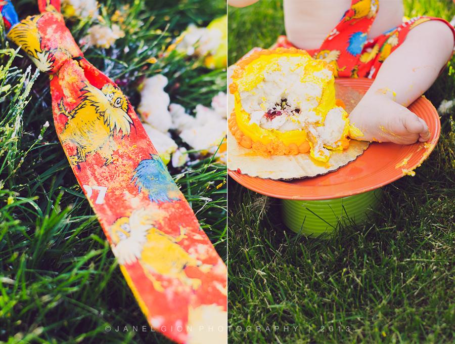 janel-gion-declan-cake-collage-6b.jpg