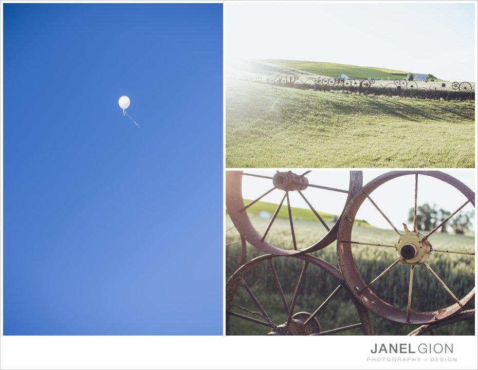 Janel-Gion-toddler-girl-balloon-photos_0021.jpg