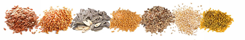 Seed variations