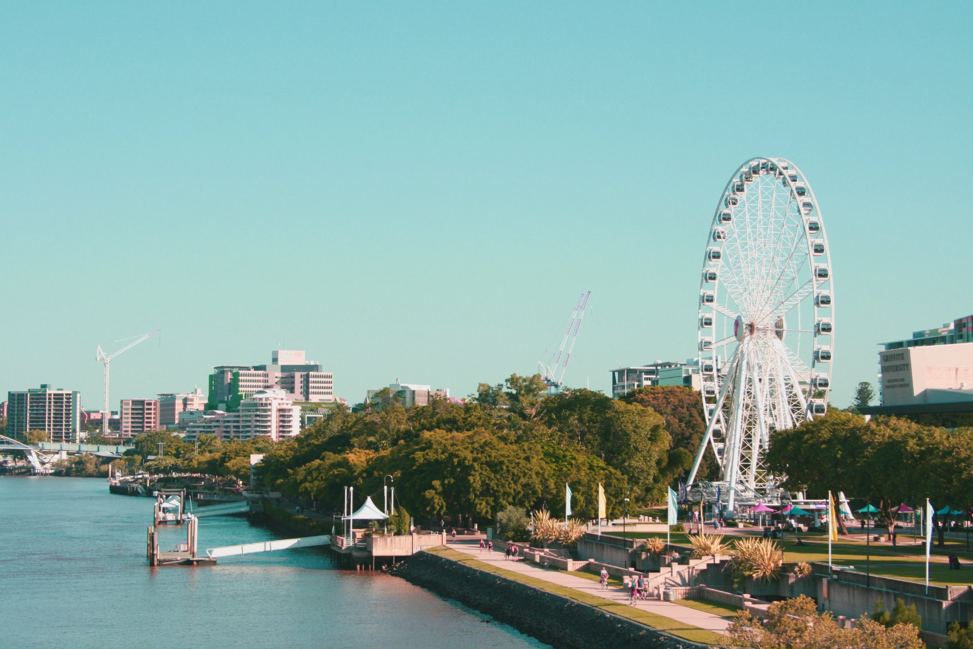 Photo of sunny Brisbane by    Alice Duffield