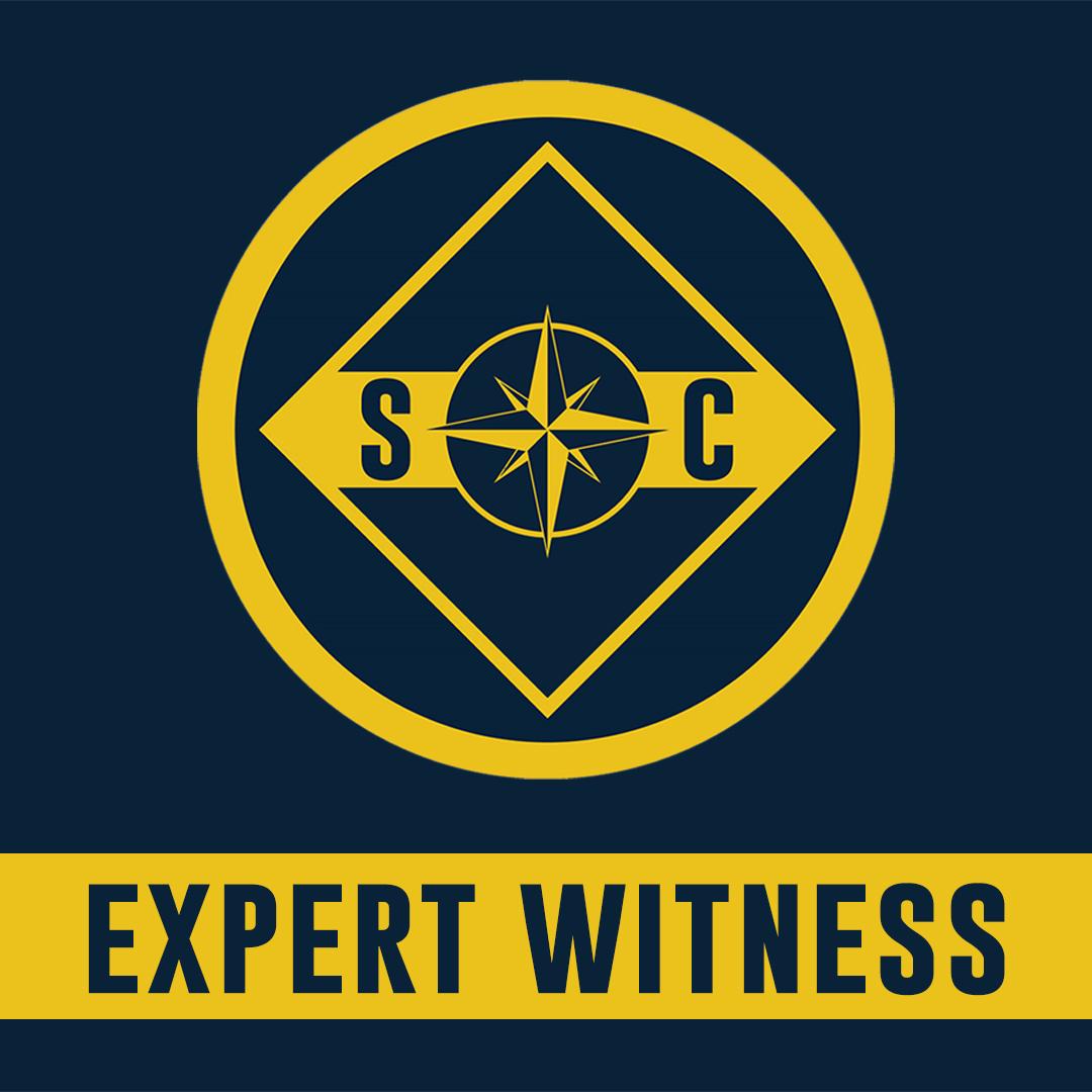 Expert Witness Web Banner.jpg