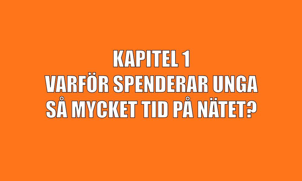 kap1-1.png