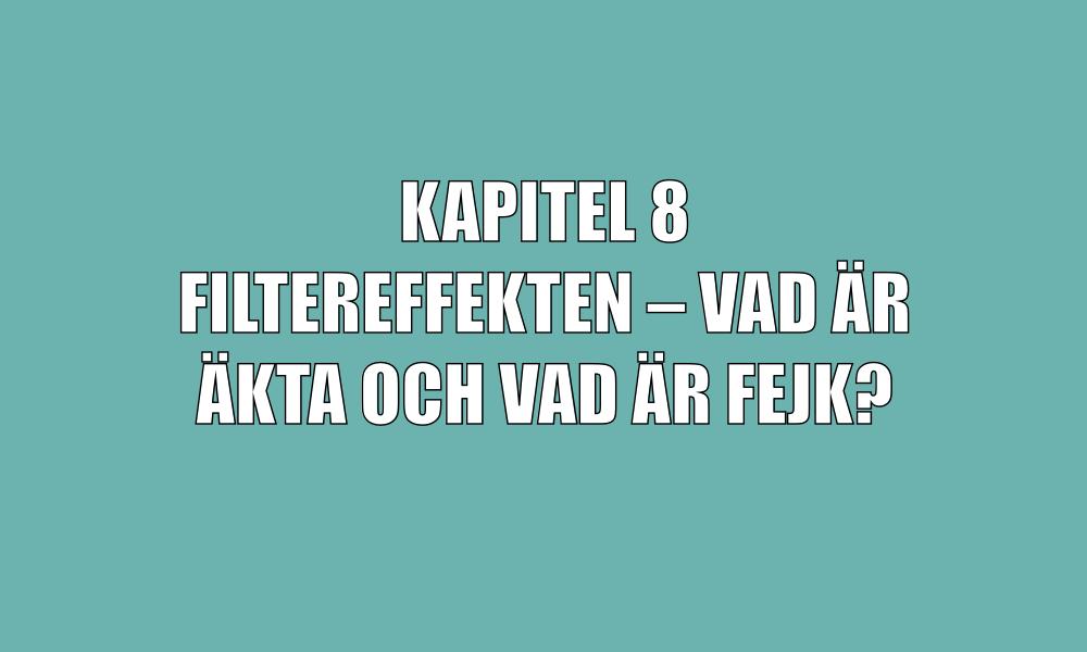 kap1-8.png