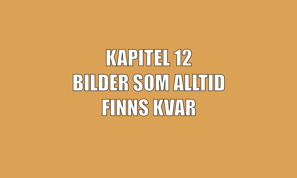 kap1-12.png