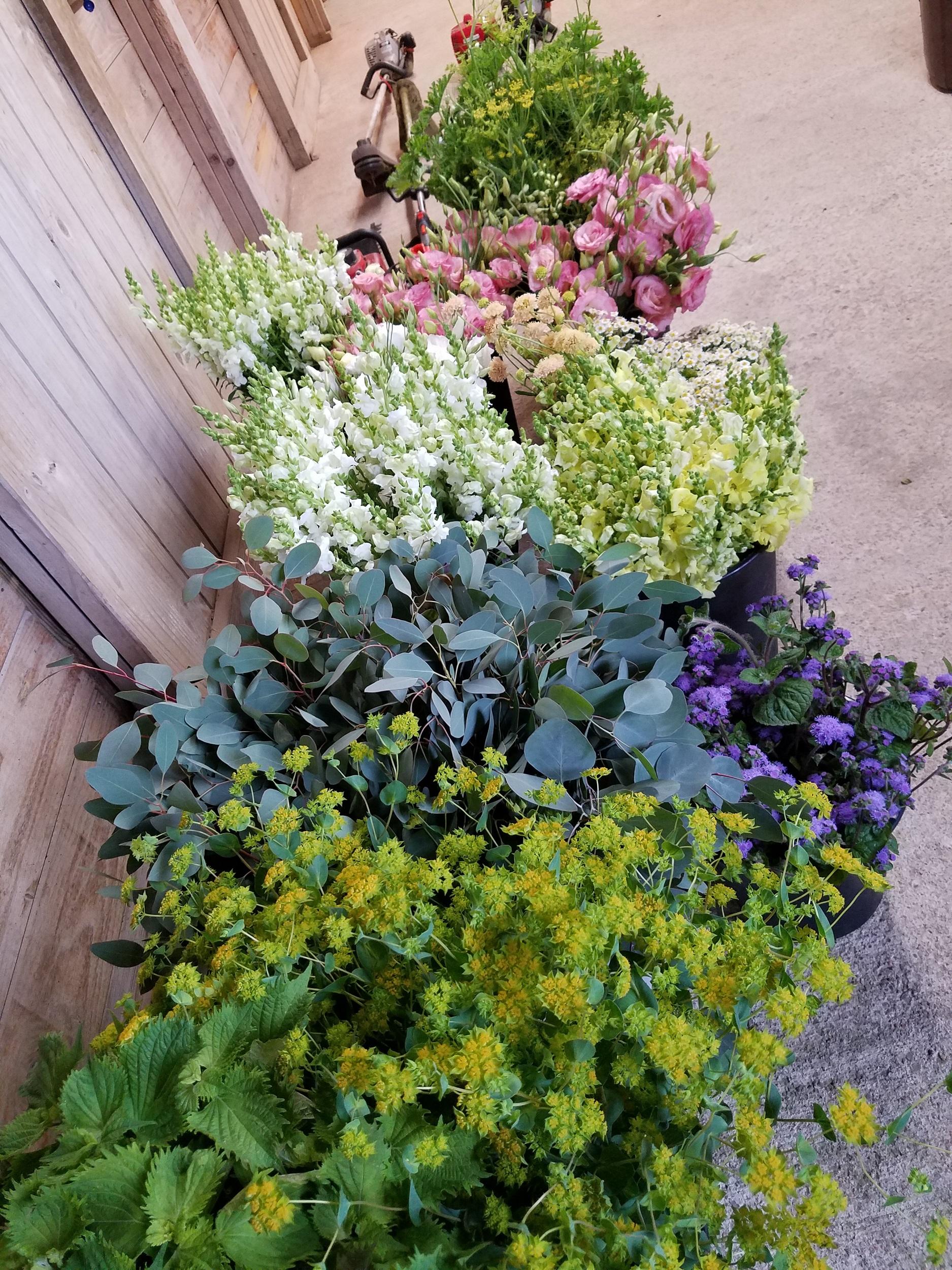 DIY-wedding-flower-farm-buckets.jpg