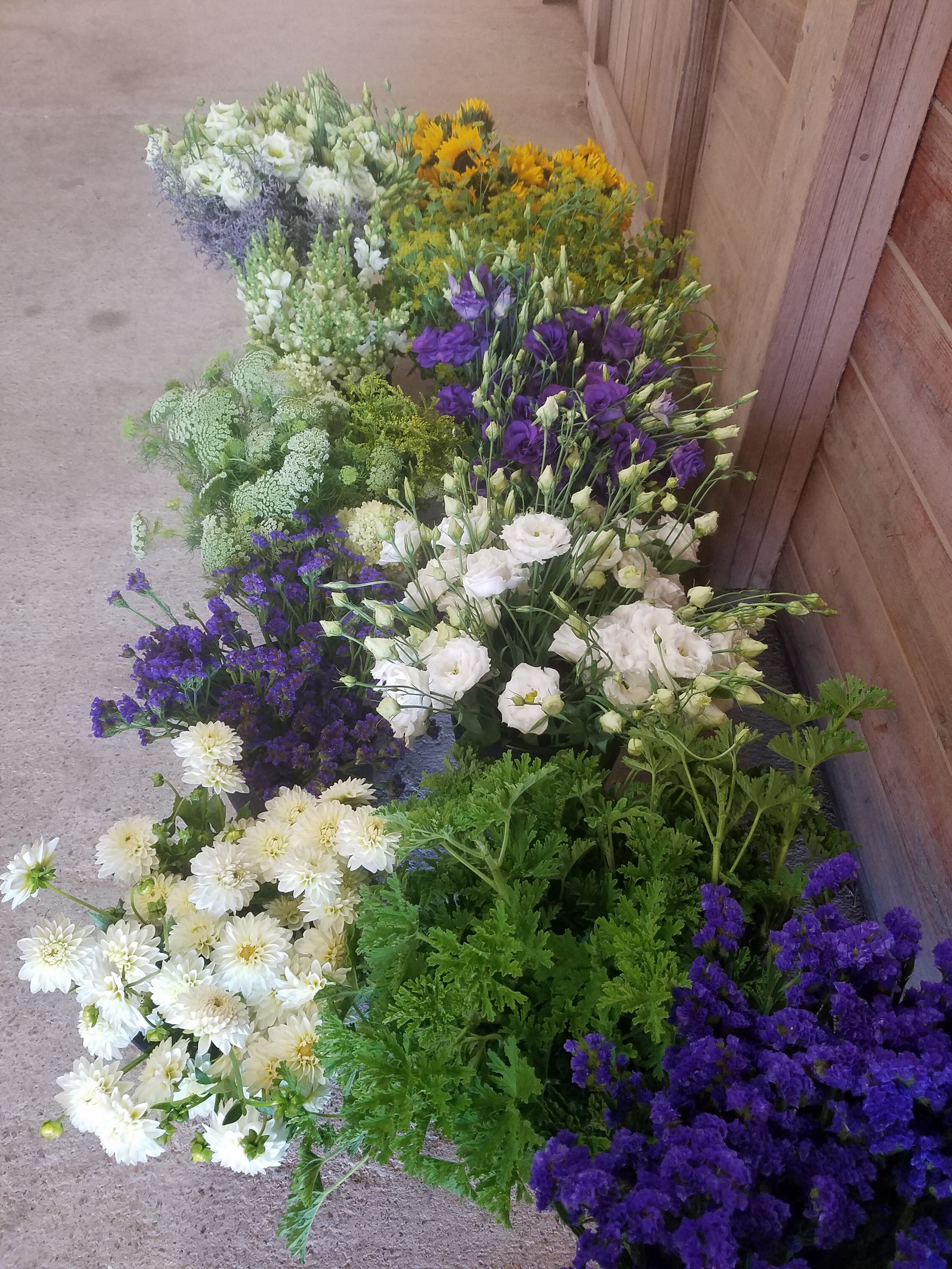 flower-buckets-local-farm.jpg