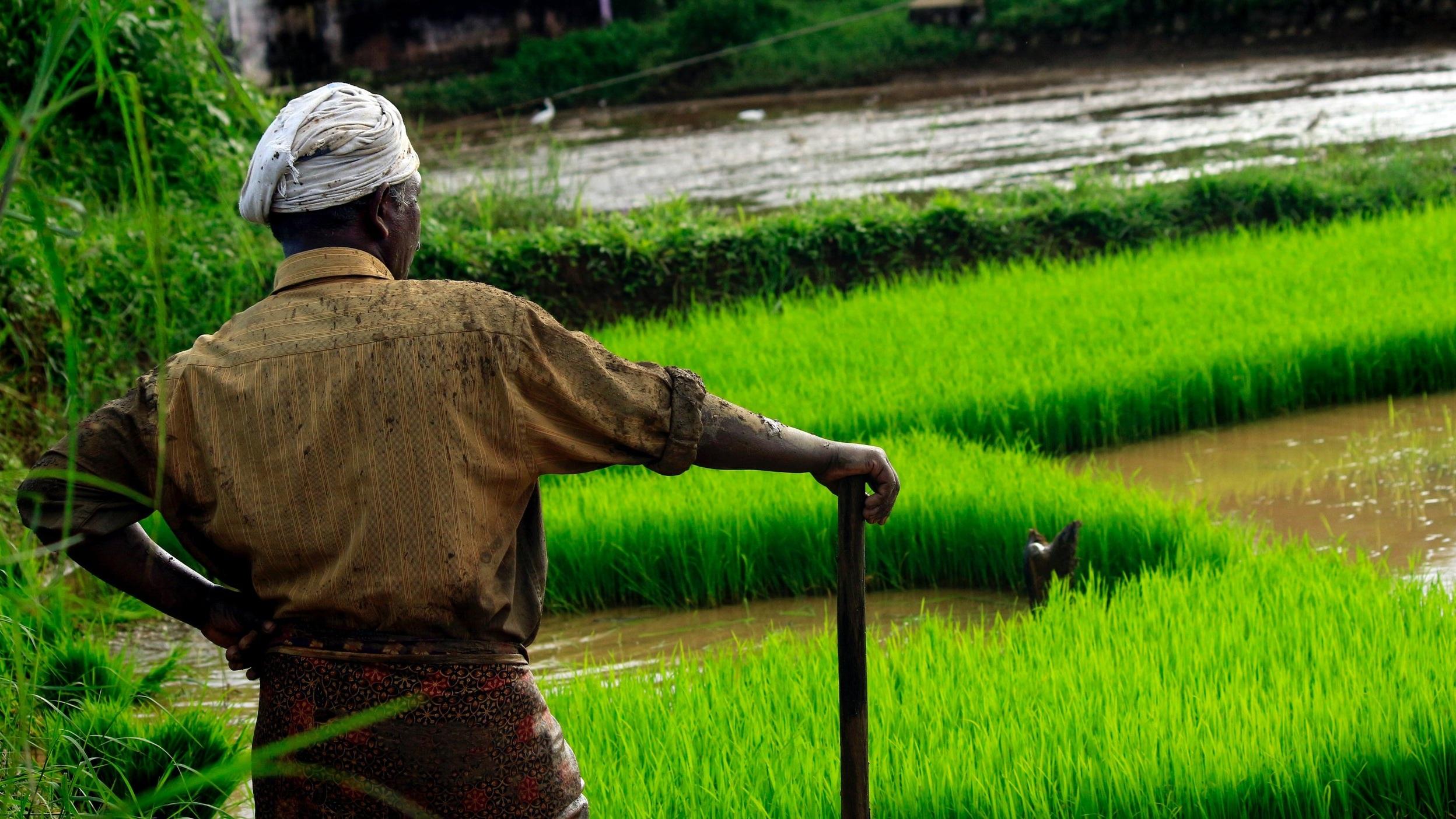 Photo by  Nandhu Kumar  on  Unsplash