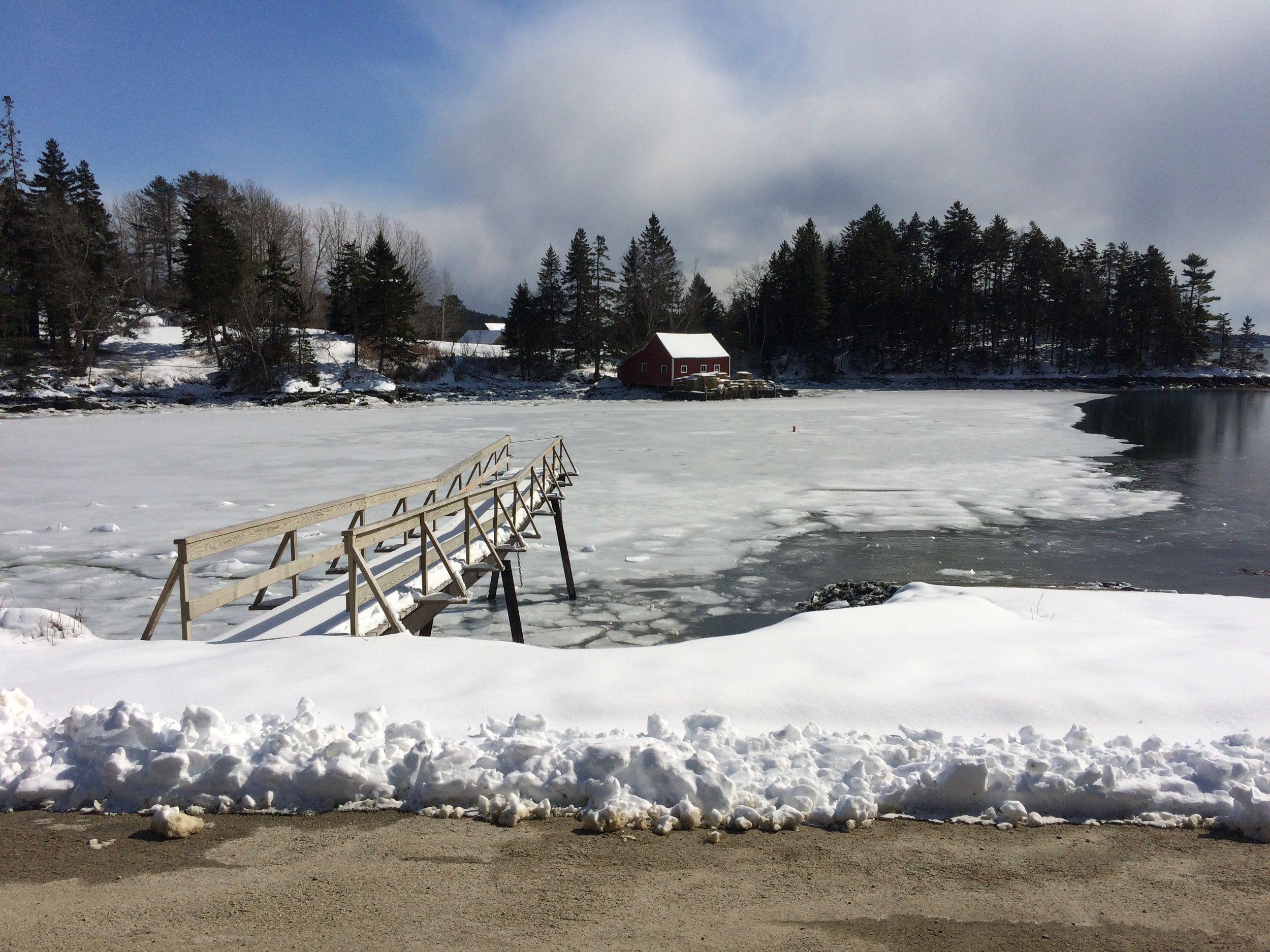 Bucks Harbor, Brooksville, Maine, March 6, 2019 Photo: Allen Kratz