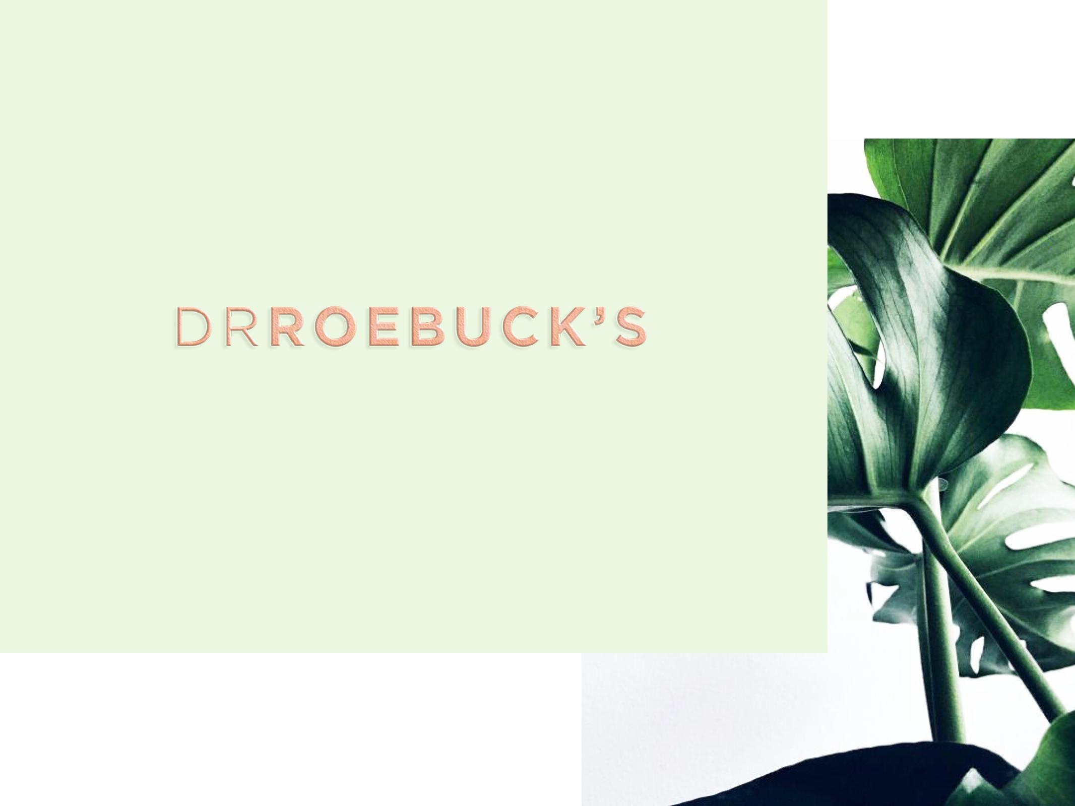 silvia_cantu_branding_lettering_modern_calligraphy_drroebucks_2.jpg