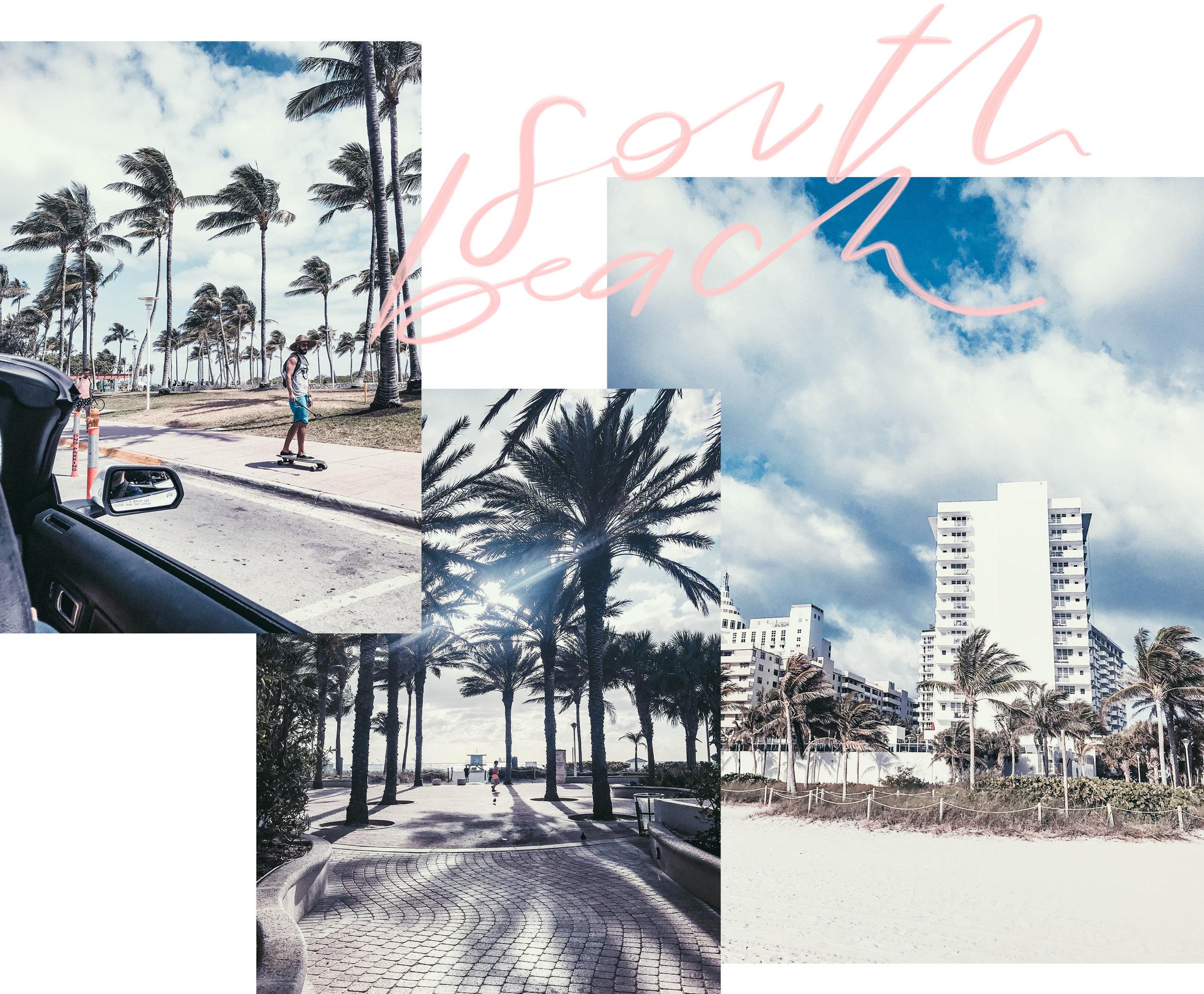 south_beach_silvia_cantu_samualfa2.jpg