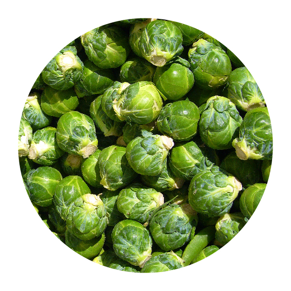 CABBAGE & BRUSSELS SPROUTS -