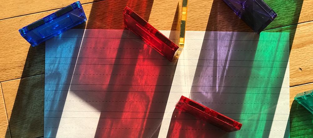 Magnatailes in sunlight ©2018Cool-Dad.com