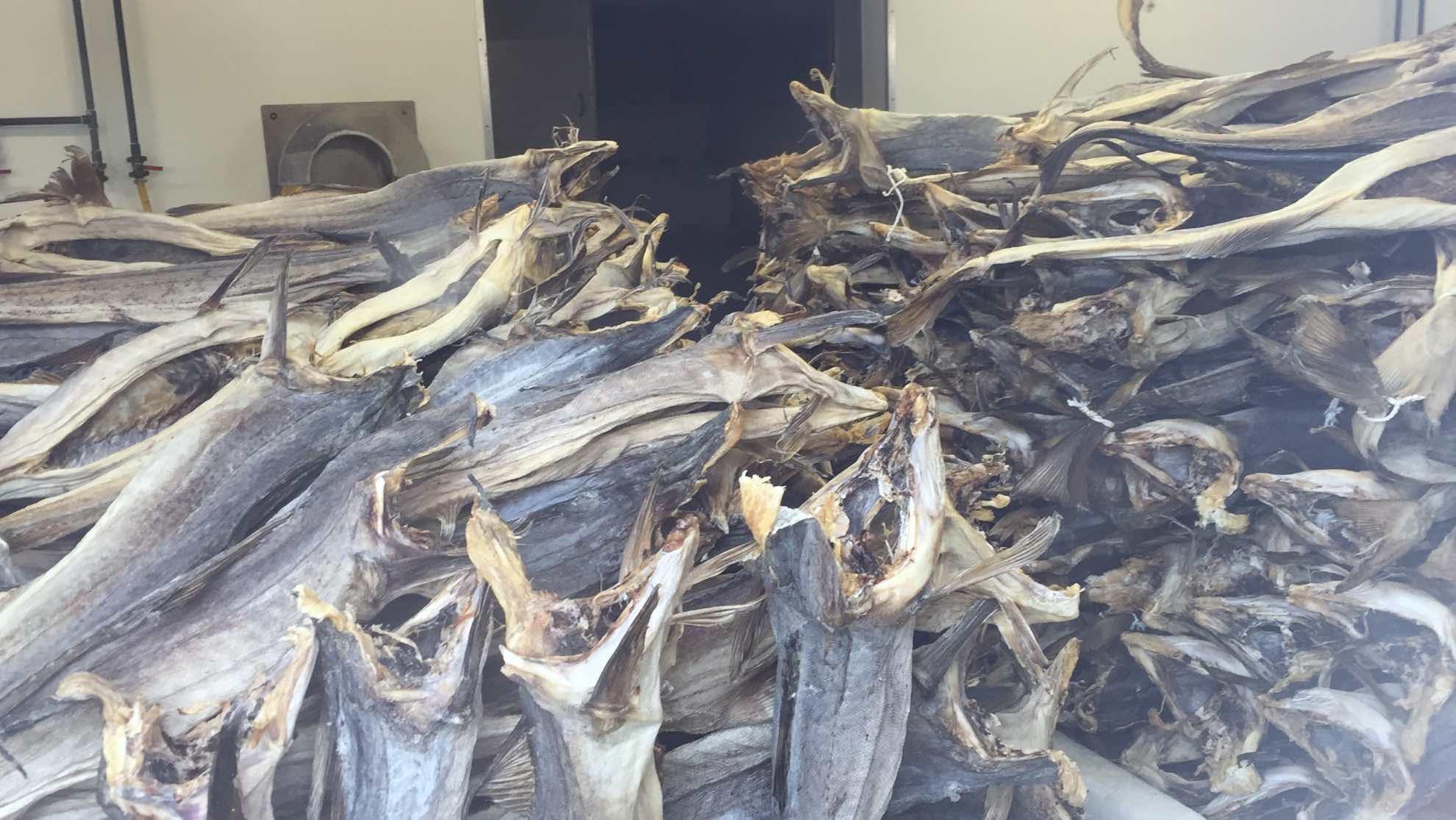 Typisch – getrockneter Fisch zum Verkauf.