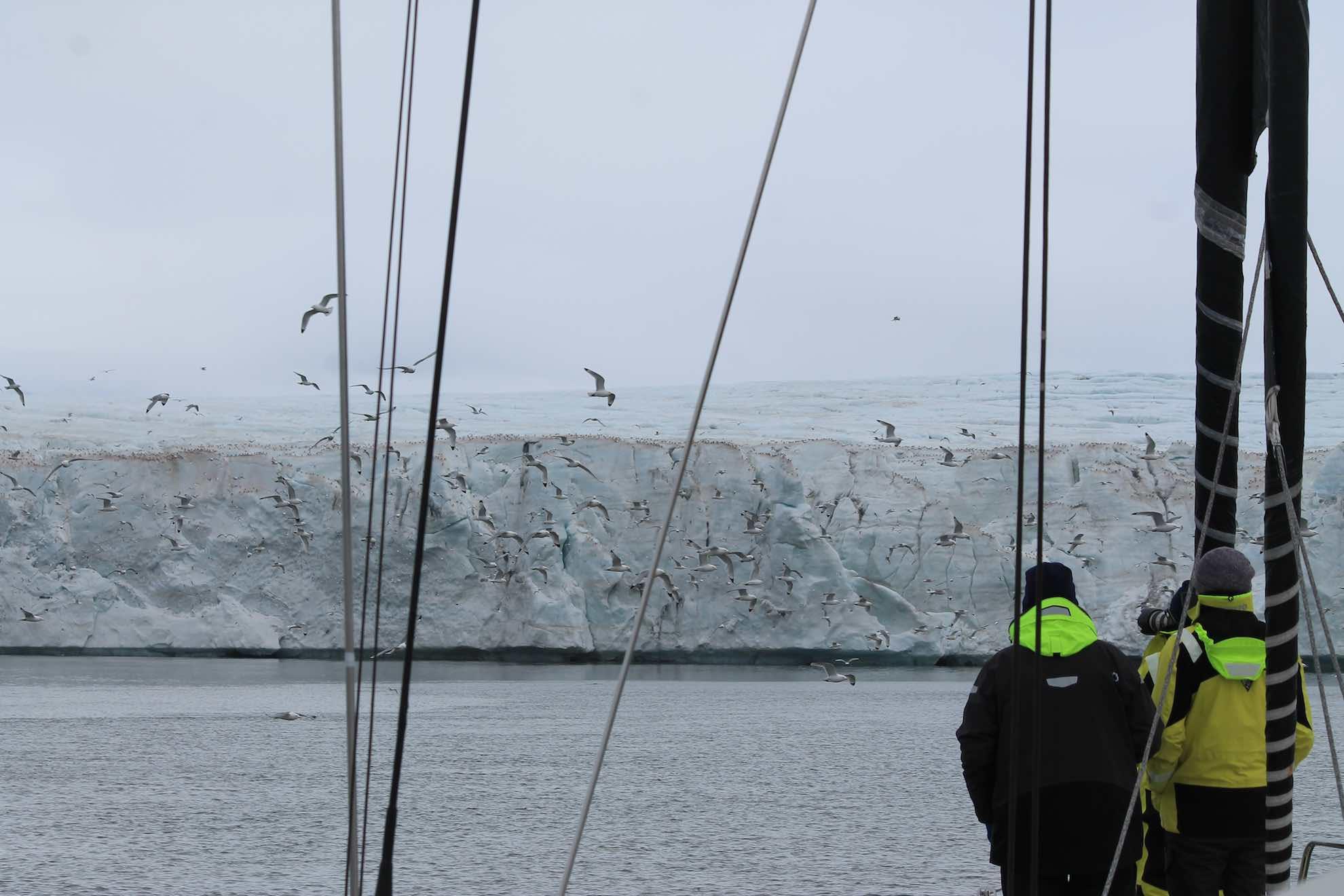 Der Anker fällt vor dem Gletscher Fridtjovbreen ...