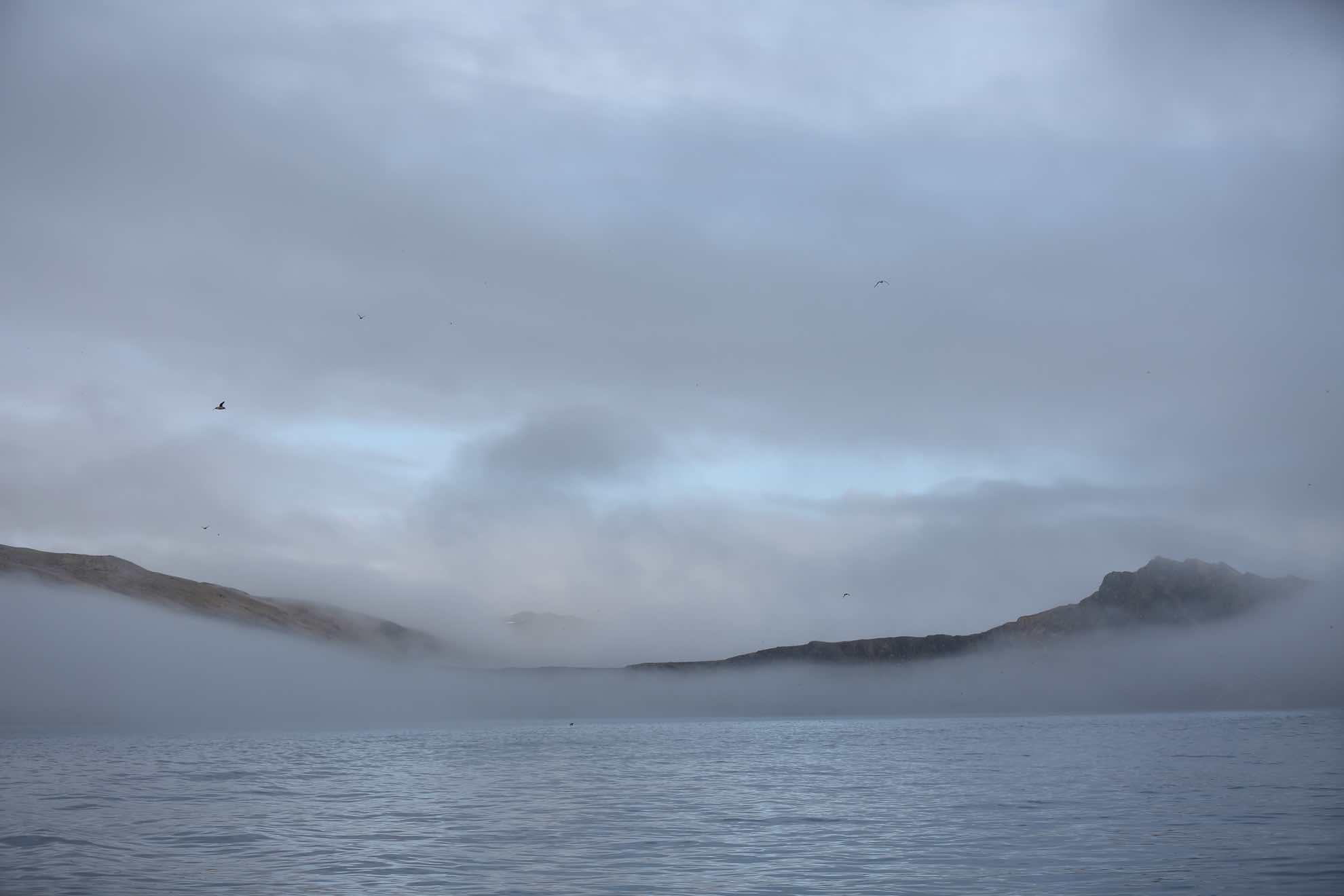 Nebel umhüllt die Bäreninsel bei der Abfahrt am Vormittag.