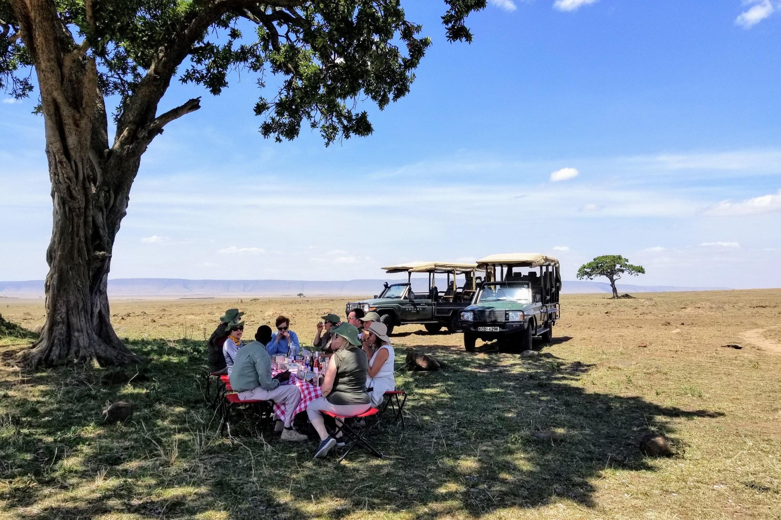 African Safari - Explore Africawith Micato Safari