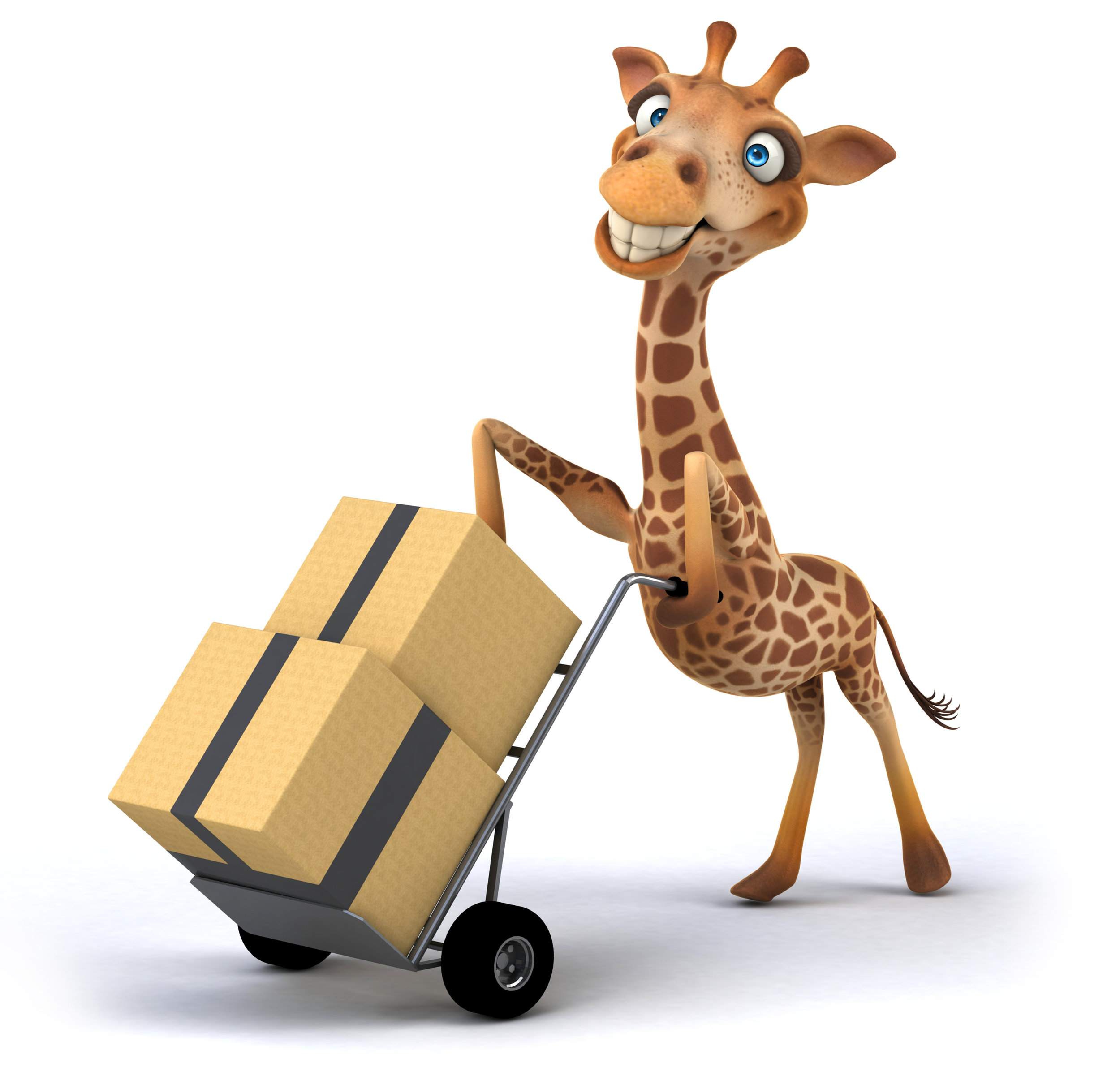 Giraffe Supplies.jpg