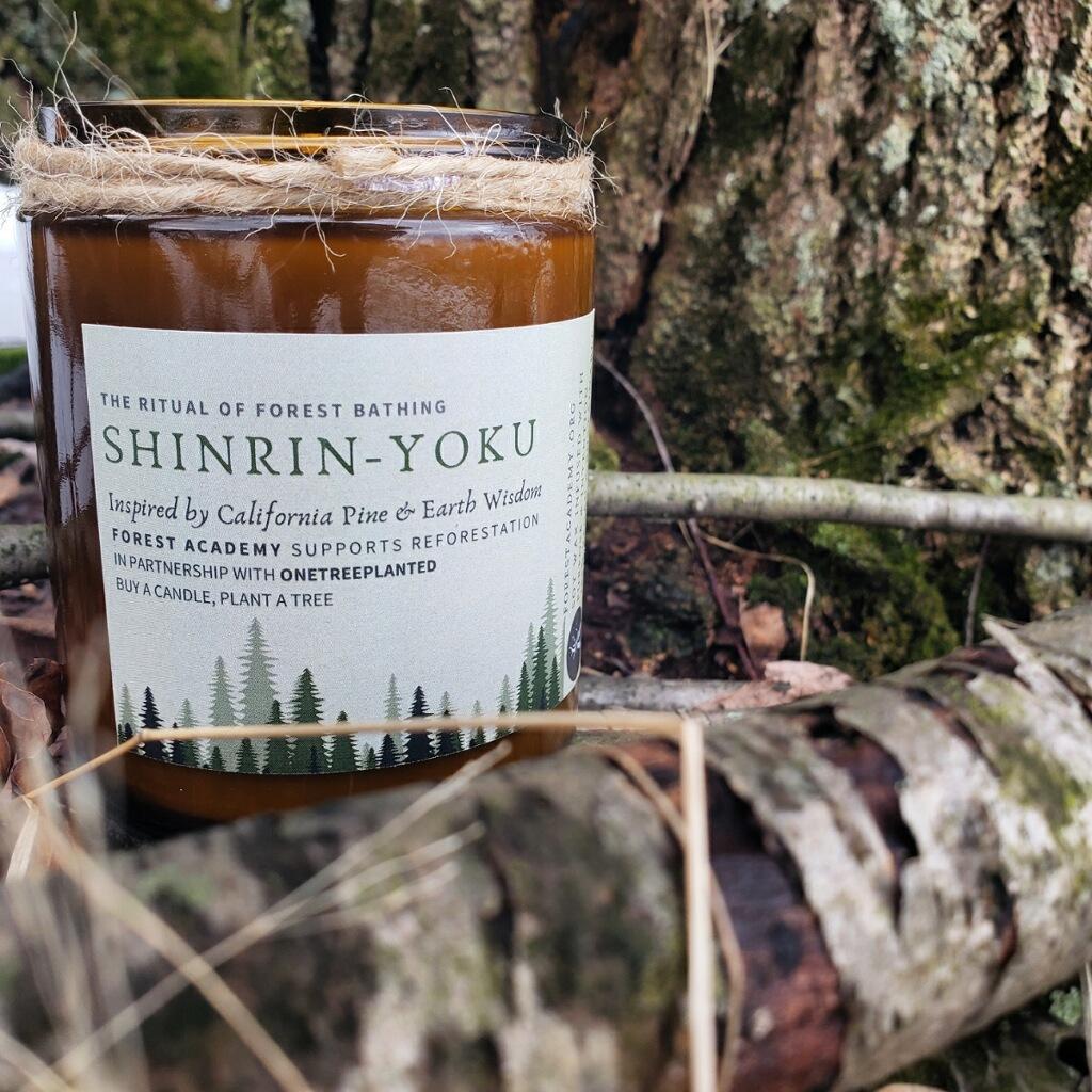 Forest Academy Shinrin-Yoku Candle