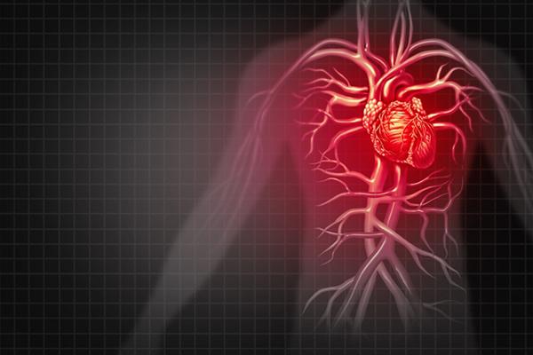 Heart Disease Help.jpg