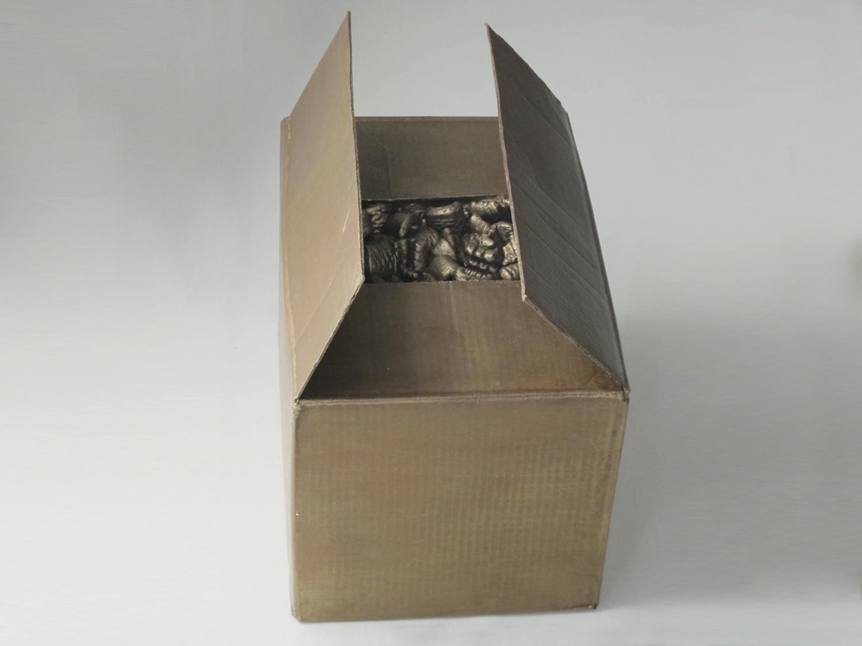 simone_Cardboard-83.jpg