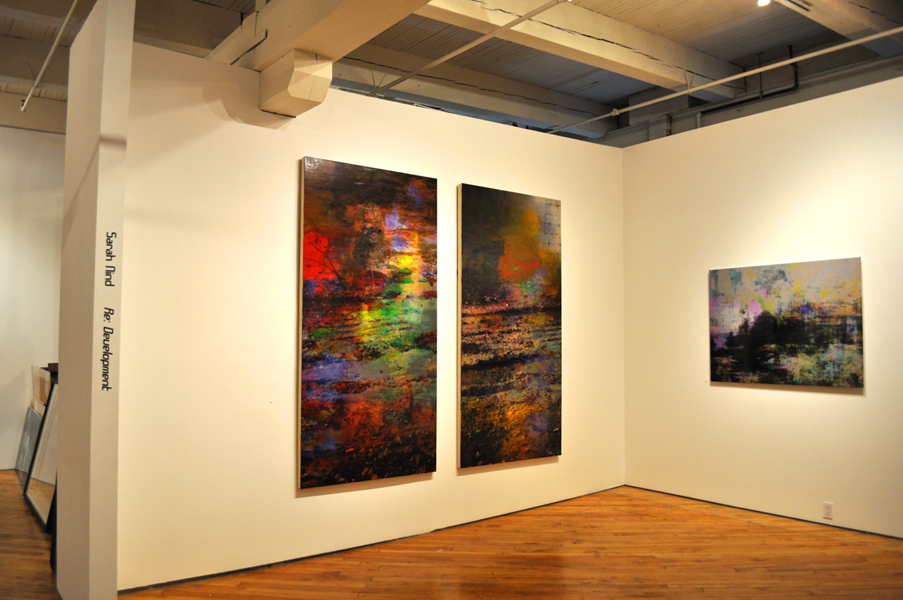 """Re: Development, installation shot, oil paint and archival ink on dibond, 36"""" x 48"""", 2011"""