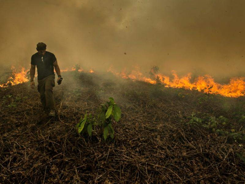 Photo Credit: Rainforest Alliance (Mohsin Kazmi)