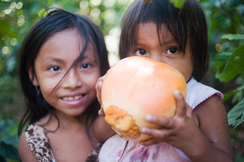 Photo Credit: Rainforest Partnership