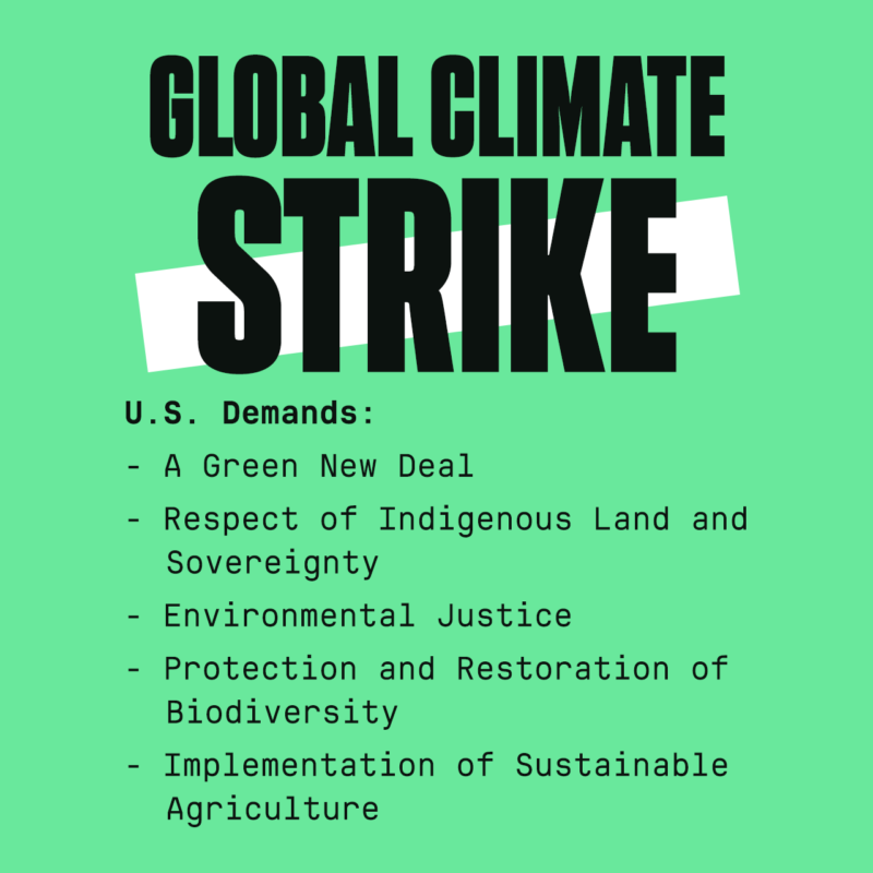 us-climate-strike-2-800x800.png