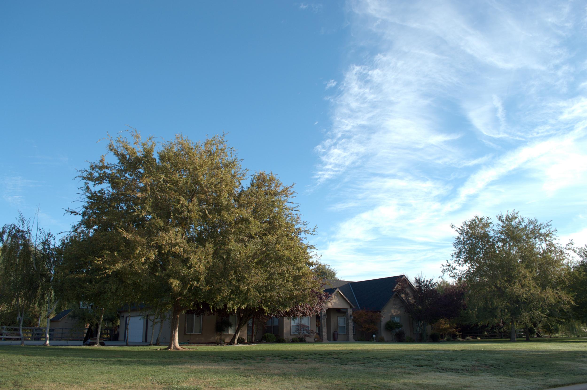 Elk Grove 17 2500w.jpg